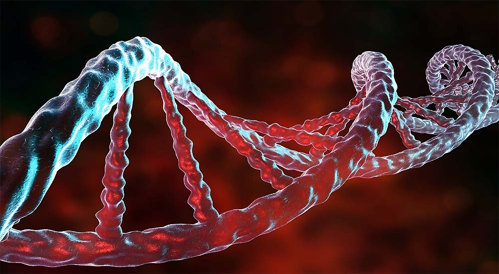 What Nutritionists Say About Changing Your Genes